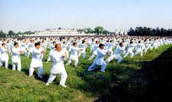 Taiji, Chinese martial arts