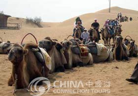 Camera Ride, Dunhuang Travel Guide