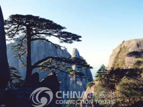 Huangshan Pine Trees, Huangshan Attractions, Huangshan Travel Guide