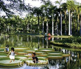 Jinghong Tropical Botany Institute,Jinghong Travel Guide