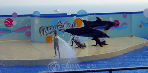 Ocean Entertainment Park of Qingdao, Qingdao Attractions, Qingdao Travel Guide