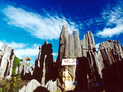 Stone Forest, Yunnan Travel