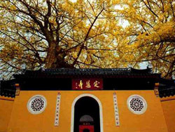 Dinghui Temple, Zhenjiang Travel